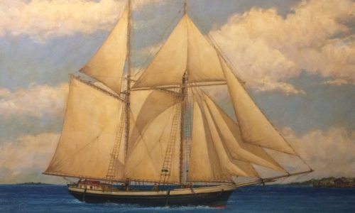 Northern Michigan in Focus: Lake Michigan Shipwreck Discovery
